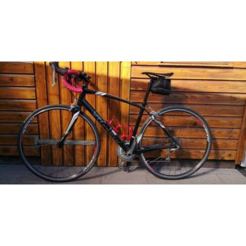 Specialized Dolce Elite Compact EQ